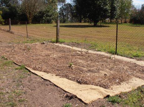 jute rectangle as base for plants